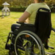 Woman in a wheelchair — Stockfoto