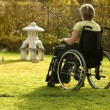Disabled senior woman in a wheelchair - Stockfoto