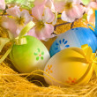 Easter eggs in the nest — Stock Photo #6869505