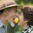 Romantic senior couple — Stock Photo #6869871