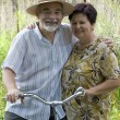 Senior couple bicycling — Stock Photo