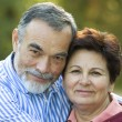 Romantic senior couple — Stock Photo #6870033