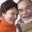 Happy elderly couple — Stock Photo #6870175