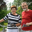 Senior couple cycling — Stock Photo #6870266