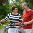 Senior couple cycling — Stockfoto