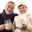 Stock Photo: Happy elderly couple