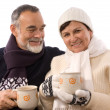 Happy elderly couple - Stock Photo