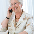 Portrait of a mature woman using telephone — Stock Photo