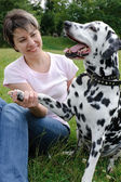 Woman playing with the dog in park — Stock Photo