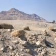 Desert near the shore of the Dead Sea — Stock Photo