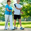 Nordic walking — Stock Photo #6931335