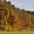 Stock Photo: Gorgeous autumnal landscape, sieben muelen tal