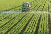 Rolnictwo traktor — Zdjęcie stockowe