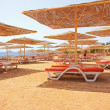 Постер, плакат: Red sand in Sharm El Sheik beach