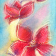 Pastels hand drawn red orchids. — Stock Photo