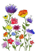 Watercolor hand drawn colorful flower brunches. — Stock Photo