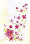 Watercolor hand drawn cherry tree brunch. — Stock Photo