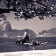Sugarloaf — Stockfoto #7519588