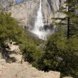 Yosemite Falls — Stock Photo #7563007