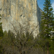 El Capitan — Stock Photo