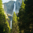 Yosemite Falls — Stock Photo