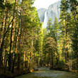 Yosemite Falls — Stock Photo #7564617