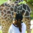 Giraffe — Photo #7564860