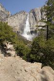 Yosemite Falls — Stock Photo