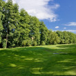 Fairway of a beautiful golf course - Foto de Stock