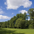 Fairway of a beautiful golf course - Foto Stock