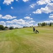Fairway of a beautiful golf course - Stok fotoğraf