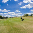 Fairway of a beautiful golf course - Zdjęcie stockowe