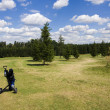 Fairway of a beautiful golf course - 图库照片