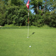 Green of a beautiful golf course - Foto de Stock