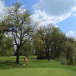 Green of a beautiful golf course - Stockfoto