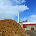 Bio fuel power plant — Stock Photo