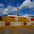 Foto Stock: Bio power plant with storage of wooden fuel against blue sky