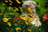 Jesienią w ogrodzie — Stock Photo