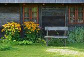 Wiejski dom — Stock Photo