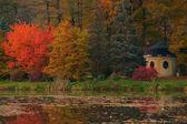 Jesień nad stawem — Stock Photo