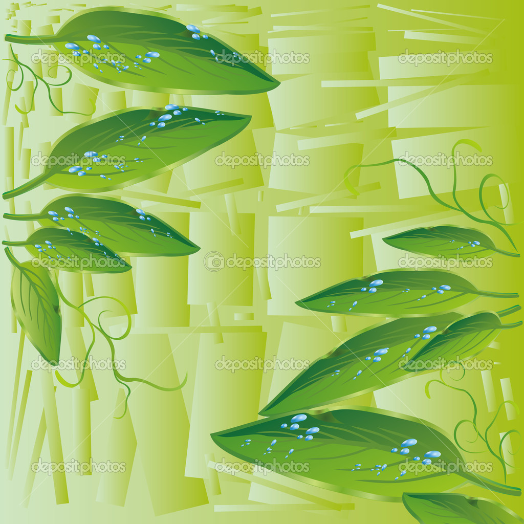  beautiful abstract green background with leaves and drops of water  Stock Vector #6868061