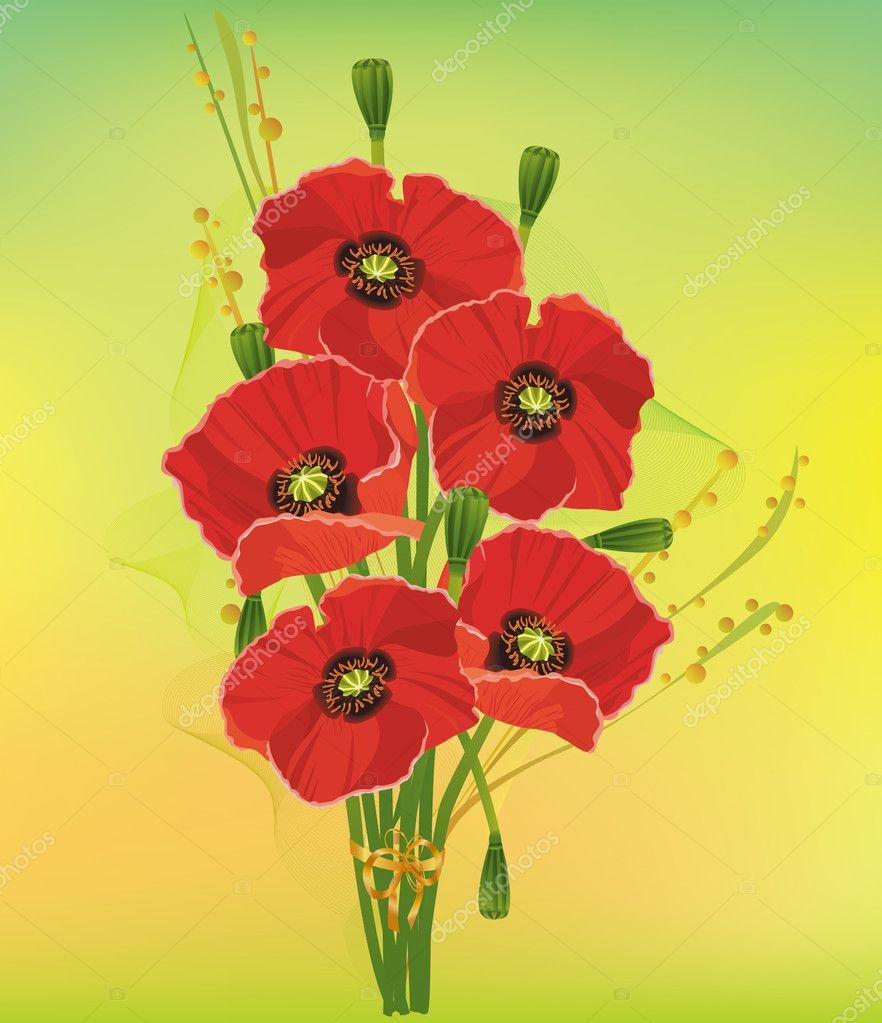 Beautiful bouquet of red poppies with decorative elements on a colorful background. Vector illustration  Stock Vector #7154356