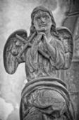 Angel_10_Black_and_White — Stock Photo