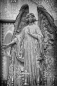Angel_06_Black_And_White — Stock Photo