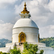 Royalty-Free Stock Photo: World peace pagoda
