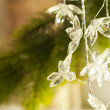 Christmas ornaments — Stock Photo #7141013