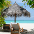 Two beach chairs under an umbrella - Stock Photo