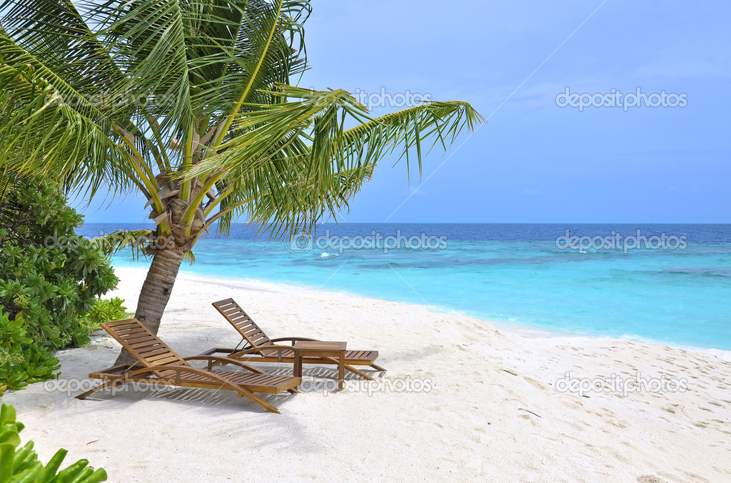 zwei liegest hle unter palmen am meer stockfoto 6932053. Black Bedroom Furniture Sets. Home Design Ideas
