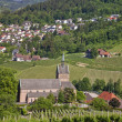 Small village with church overlooking vineyards — Stock Photo