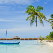 Blue boat and palm tree on beach — Stock Photo #6972352